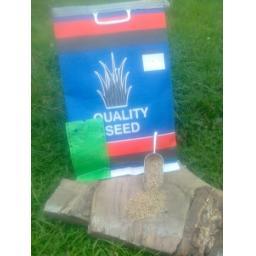 Grass Seed - Chicken Run Mix