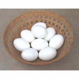 Plastic Nest Eggs Bantam