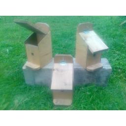 bird box 3.jpg