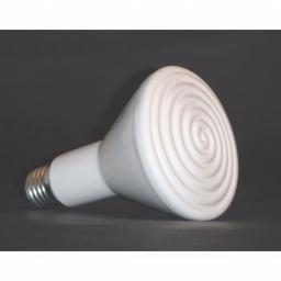 Ceramic Bulbs