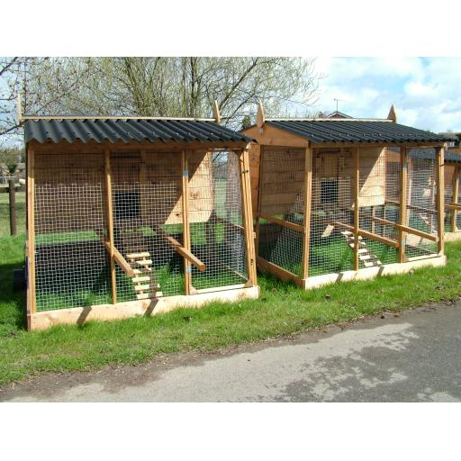Full size Penthouse Chicken House
