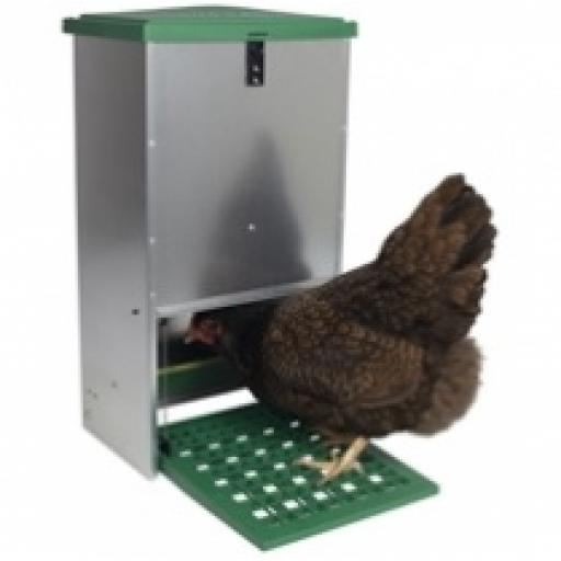 Galvanised Treadle Poultry Feeder