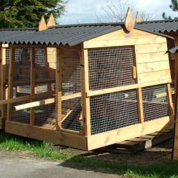Several Poultry Houses.jpg