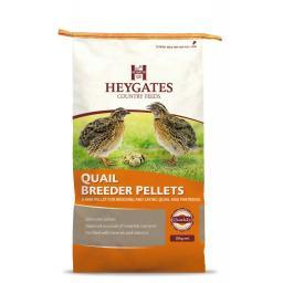 Heygates quail.jpg