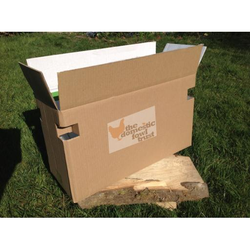 Poultry carry box (suitable for up to 2 hens or 3 bantams)