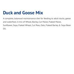 Duck_and_Goose_Mix___ForFarmers_UK.jpg