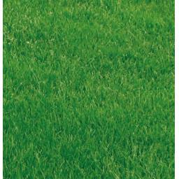 Premium_Lawn_Mixture.jpg