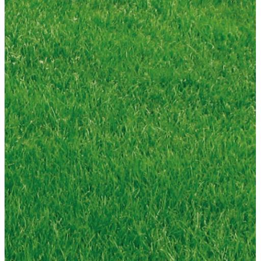 Grass Seed - Premium Lawn / Pen Mix - 1kg