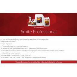 Smite_Professional_–_Smite_Professional.jpg