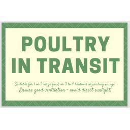 Poultry in transit 2021-08-09 134101.jpg